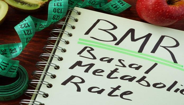 Xác định chỉ số BMR để xây dựng chế độ ăn uống phù hợp nhu cầu cơ thể