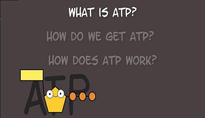 Bạn có biết ATP là gì hay chưa nào?