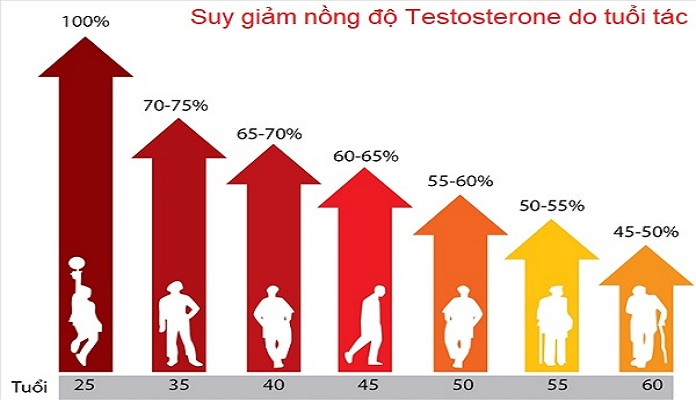 Suy giảm nồng độ Testosterone theo thời gian