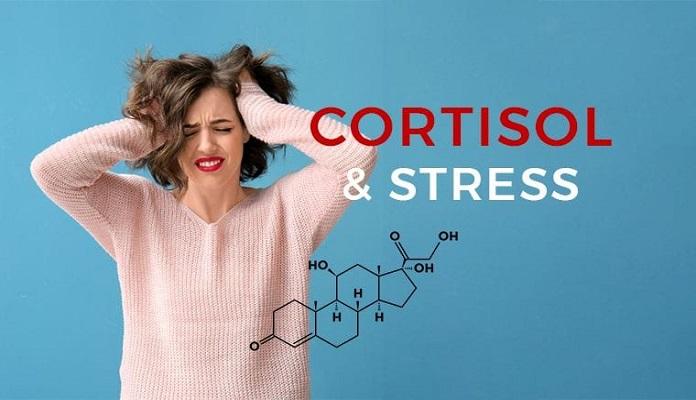 Vai trò chống stress của Cortisol